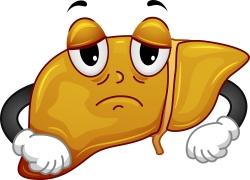 Fatty Liver Mascot