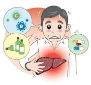 Penyebab-dan-Gejala-Penyakit-Liver1